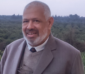 Prof. Mohamed A. Moustafa Hassan: