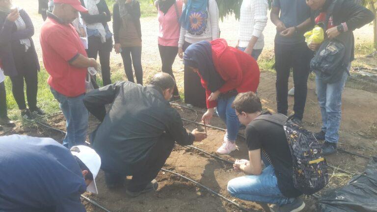Botanical Garden Activity
