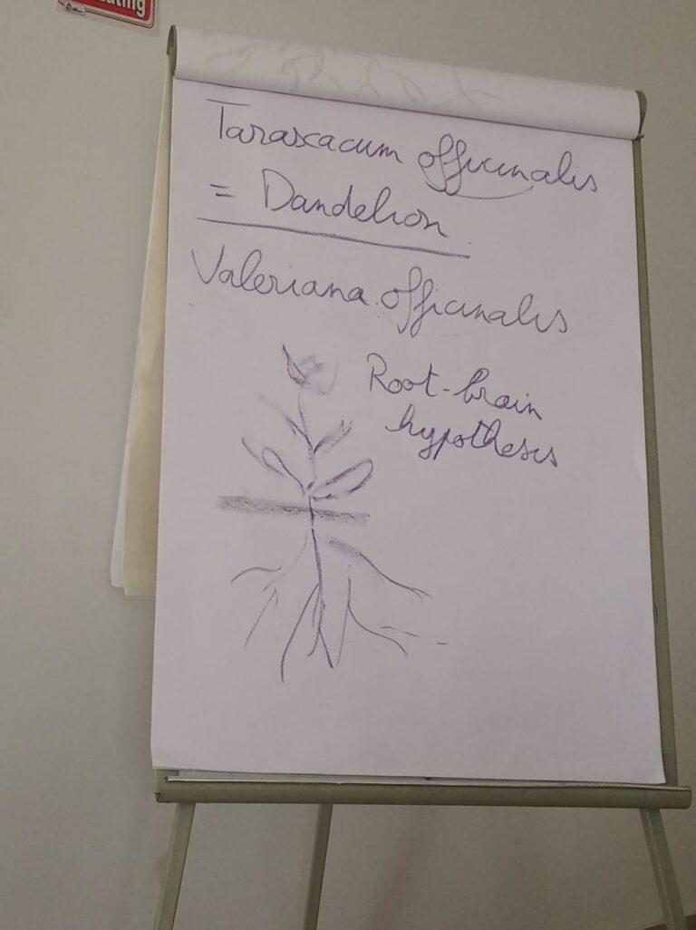 Biodynamic training